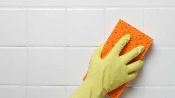 Как избавиться от плесени и грибка в ванной, швах между плиткой и герметике