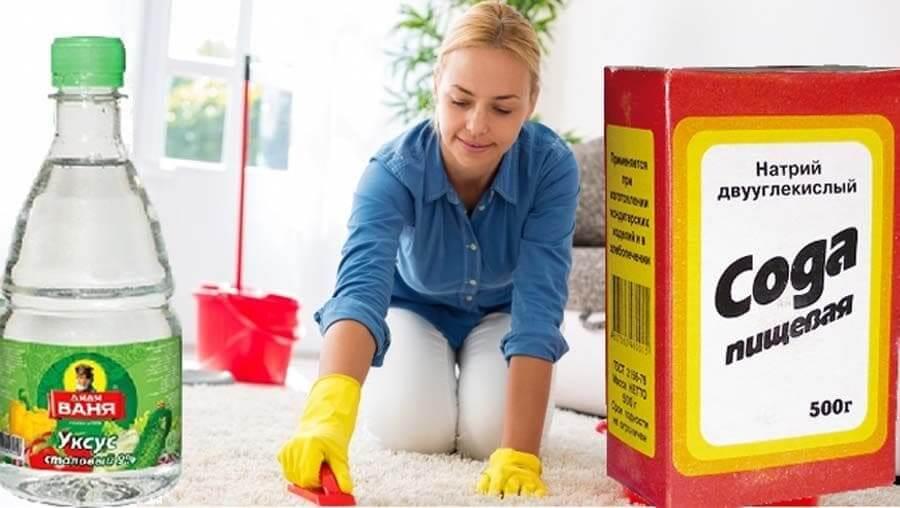 Запах мочи в доме: как избавиться