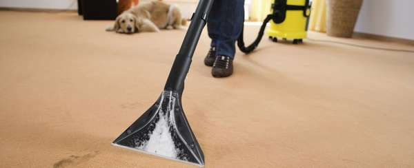 Используя пылесос можно убирать порошковые средства.