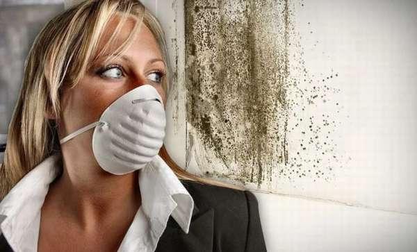 Как избавиться от запаха сырости и плесени в доме?